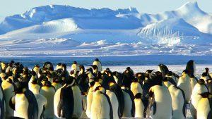 Le statut juridique des pôles Nord et Sud