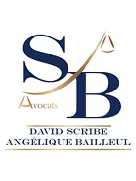 Cabinet SCRIBE BAILLEUL SOTTAS Avocat Droit Pénal des Affaires Troyes