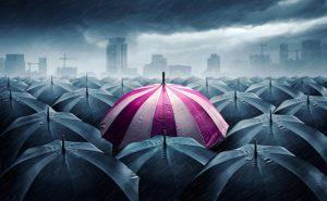 Assurance en France : les 7 points importants à savoir