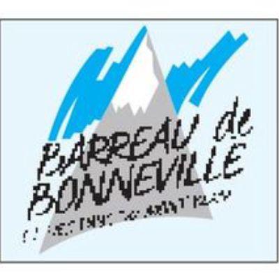 Cabinet SERRATRICE & BOGGIO Avocat Bonneville