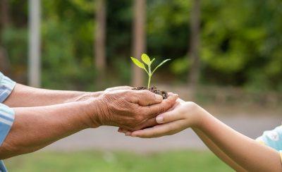 Droit de l'environnement – Les principaux domaines d'intervention